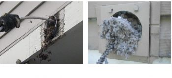 MD Silver Spring Rockville MD duct cleaners,ducting cleaning,air vents cleaning,how long does air duct cleaning take,commercial air duct cleaning,dryer vent cleaning northern va,vent cleaning,cleaning air ducts,duct cleaning service near me,clean ducts,air duct and dryer vent cleaning,how long does it take to clean air ducts,commercial dryer vent,commercial duct cleaners